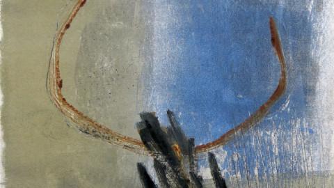 Debora Antonello